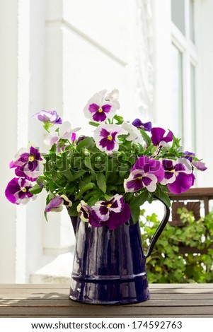 Bouquet of purple pansies in blue enamel-jug on balcony, white background, copy space