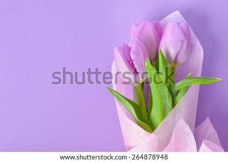 bouquet of purple tulips in purple fabric background - stock photo
