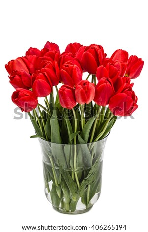 Bouquet of red flowers tulips in vase, isolated on white background - stock photo
