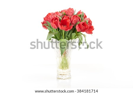 Bouquet of red fresh spring tulip flowers in vase on white background.           - stock photo