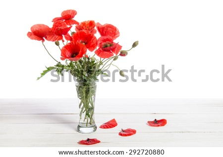 Bouquet of red poppies in glass vase and poppy petals near on old white wooden table - stock photo