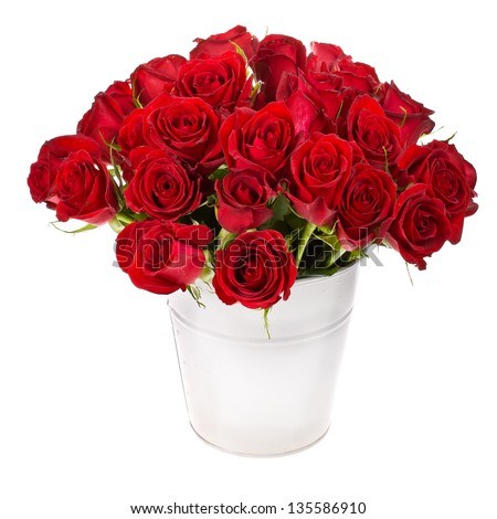 bouquet of red roses in a white bucket isolated on white background - stock photo