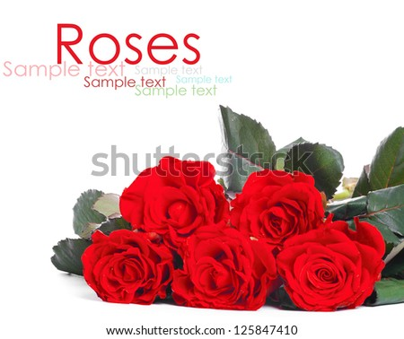 Bouquet of red roses, isolated on white - stock photo