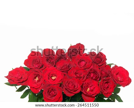 bouquet of red roses on a white background,