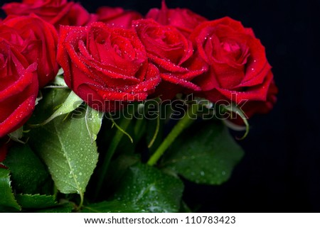bouquet of red roses on black background. selective focus