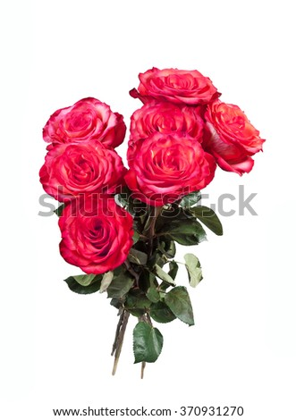 Bouquet of red roses on the white background - stock photo
