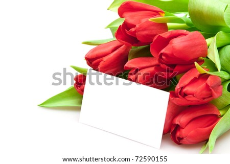 bouquet of red tulips isolated on white - stock photo