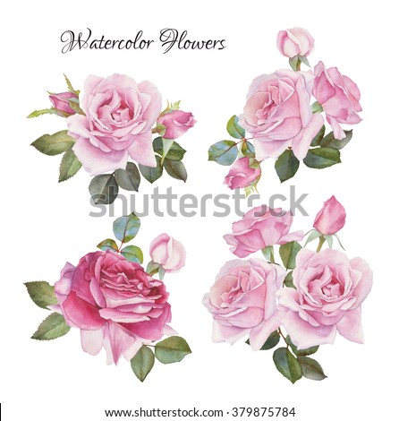 Bouquet of roses. Flowers set of hand drawn watercolor roses - stock photo