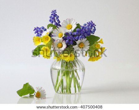 Bouquet of spring colorful flowers in a vase. Romantic floral still life with bouquet of daisy, grape hyacinth and cowslip flowers in a vase. Fine art flower photography. - stock photo