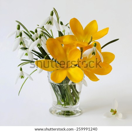 Bouquet of spring flowers in a vase. Spring still life with bouquet of snowdrops and crocus flowers. - stock photo