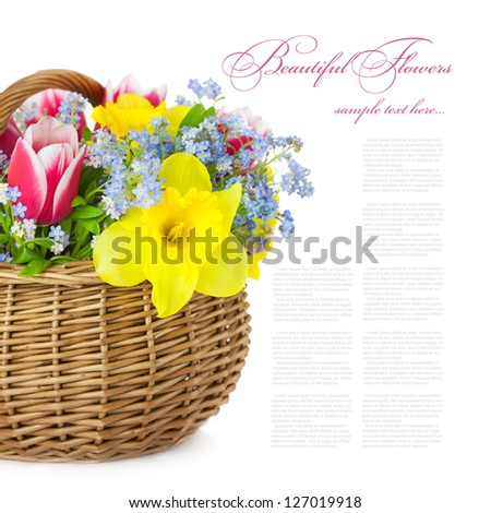 Bouquet of Spring Flowers in Basket  / isolated on white background - stock photo