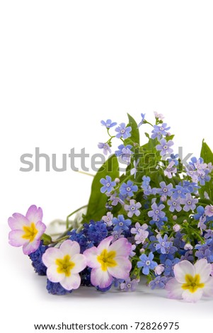 Bouquet of spring flowers on a white background