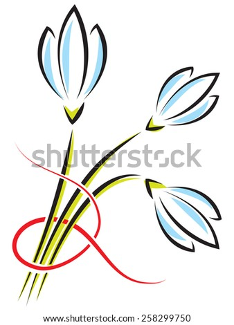 bouquet of spring flowers on a white background. Crocuses or snowdrops with a red ribbon - stock photo