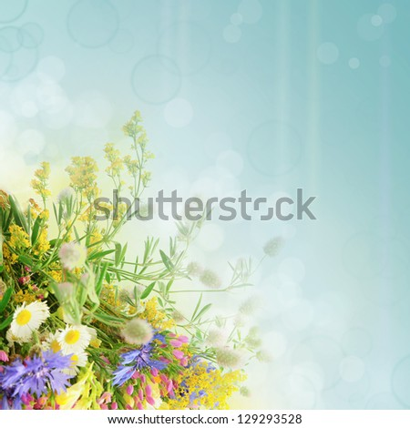 Bouquet of summer flowers  with blue bokeh and copy space,  floral background - stock photo