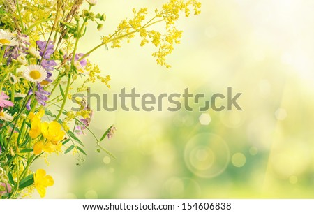 Bouquet of summer meadow flowers  with bokeh and copy space,  floral background - stock photo
