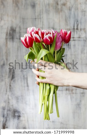 Bouquet of tulips in beautiful hands - stock photo