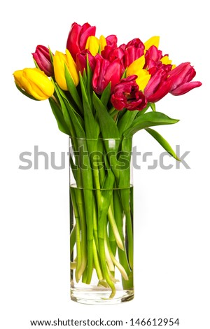Bouquet of tulips over white - stock photo