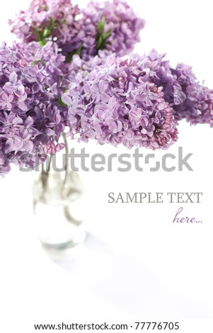 Bouquet of violet lilac in a vase on white background - stock photo