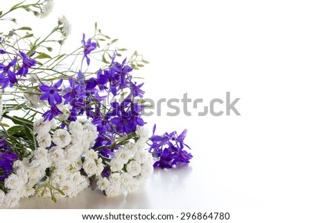 Bouquet of white and blue flowers on a white background. Space for text