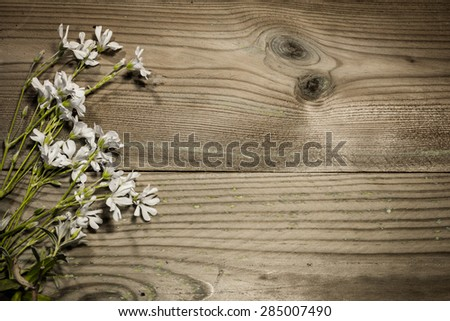 bouquet of white flowers on brown wooden background - stock photo