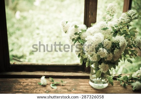 Bouquet of white flowers on windowsill. Spiraea nipponica flowers. Vintage background. Image with retro filter effect