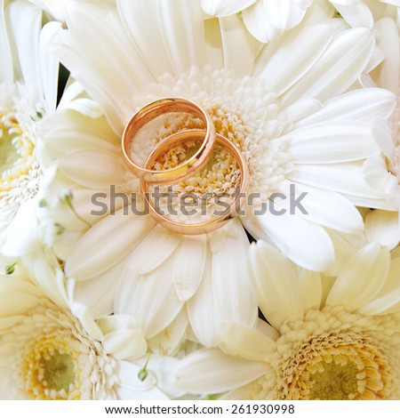 bouquet of white gerbera and wedding gold rings - stock photo