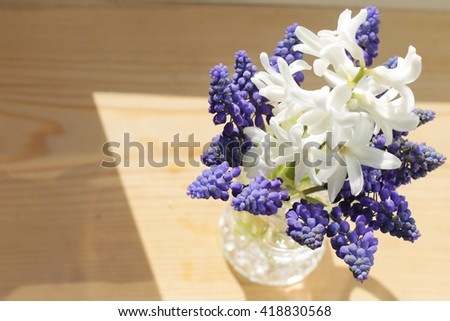 bouquet of white hyacinth and muscari in the window - stock photo