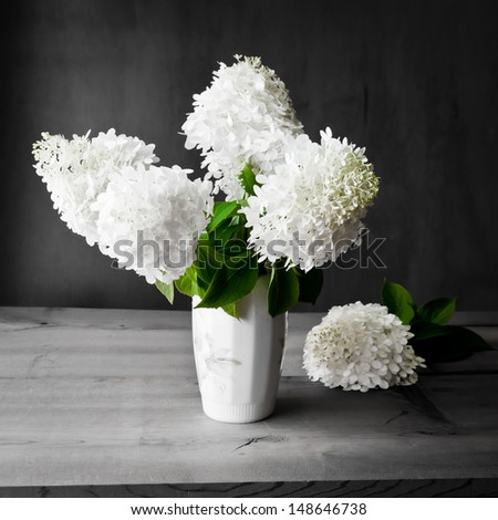 Bouquet of white hydrangea flowers on a dark grunge background.  selective focus, shallow dof - stock photo