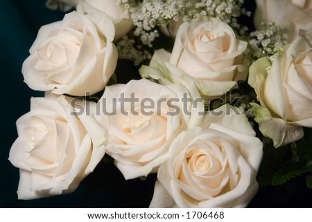 bouquet of white roses under natural light