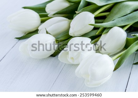 Bouquet of white tulips laying on white wooden table - stock photo