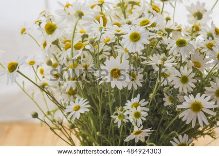 Bouquet of wildflowers daisies