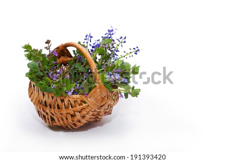 bouquet of wildflowers in basket, isolated on white - stock photo