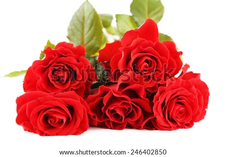 Bouquet of wonderful red roses isolated on white