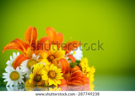 bouquet of yellow and white daisies on a green background