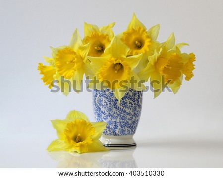 Bouquet of yellow daffodils flowers in a blue vase. Floral still life with bouquet of narcissus flowers in a vase. - stock photo