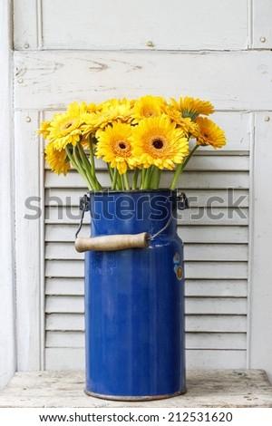Bouquet of yellow gerbera daisies in blue bucket - stock photo