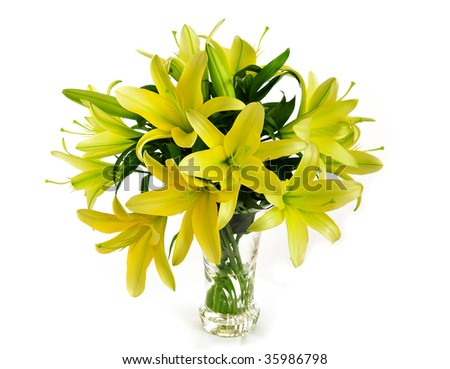 bouquet of yellow lily - stock photo