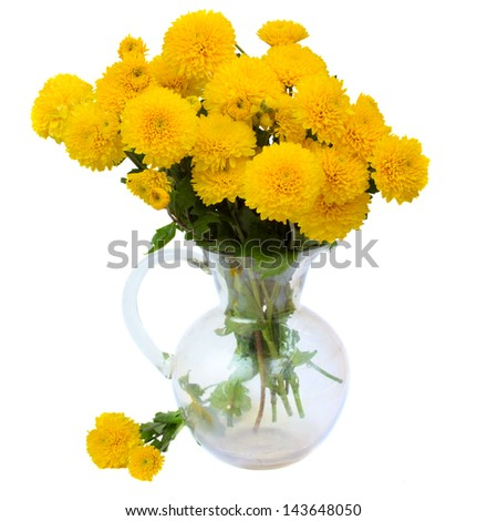 bouquet of yellow mums in glass vase isolated on white background - stock photo