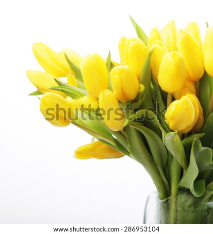 bouquet of yellow tulips in a vase isolated on white