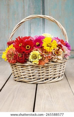 Bouquet of zinnia flowers in wicker basket, copy space