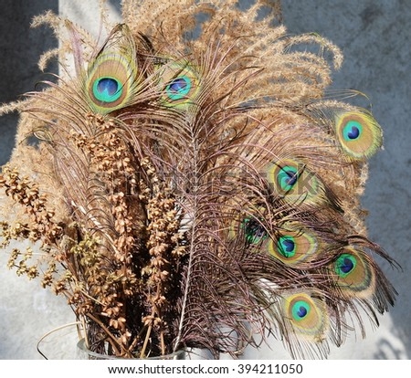 Bouquet peacock feathers and basil - stock photo