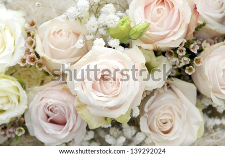Bouquet rose - stock photo