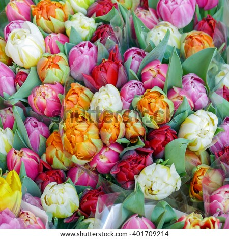 Bouquets with tulips for sale. - stock photo