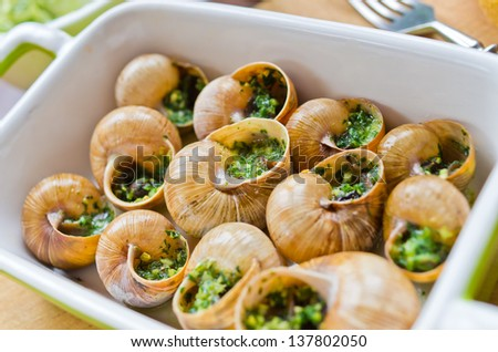 Bourgogne snails with garlic butter - stock photo