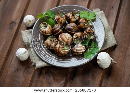 Bourgogne snails with garlic butter, rustic brown wooden surface - stock photo
