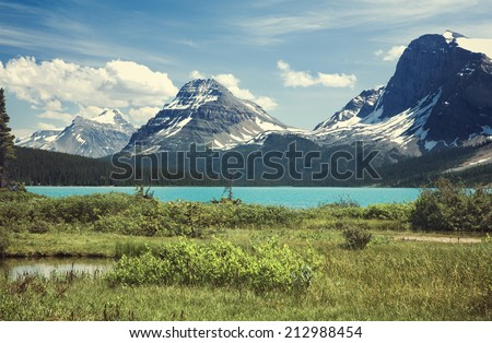 Bow Lake in Banff National Park, Alberta, Canada. Idyllic scene of glacial emerald waters surrounded by mountains, evergreen trees and green meadow during the summer season.