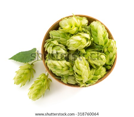 bowl full of hop cones isolated on white - stock photo