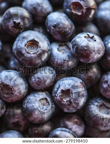 Bowl of blueberries, focus on a single blueberries, shallow DOF - stock photo