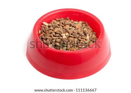 Bowl of cat food isolated on white