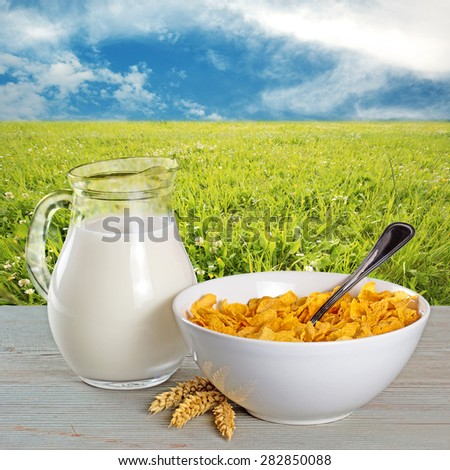 bowl of cornflakes and milk jug in a country background - stock photo